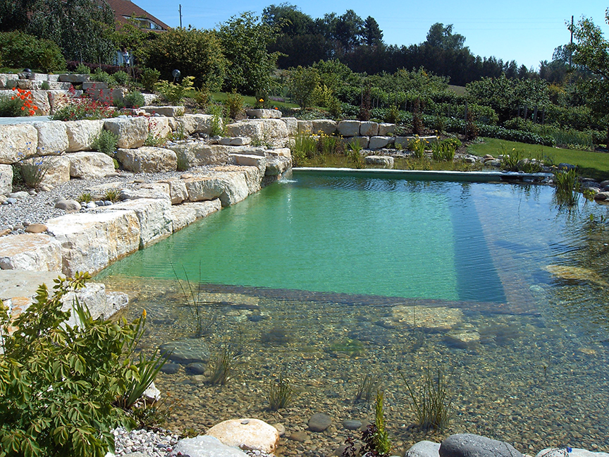 Natural swimming ponds pools aquatic consultant for Pond swimming pool