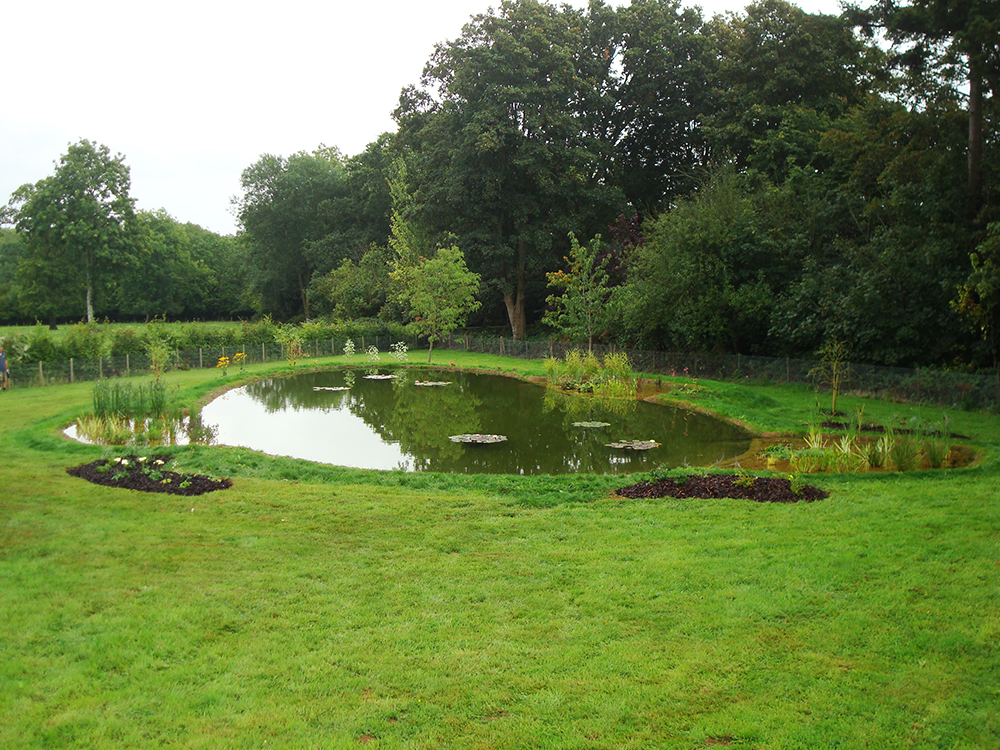 Ponds water features aquatic consultant cornwall for Pond features